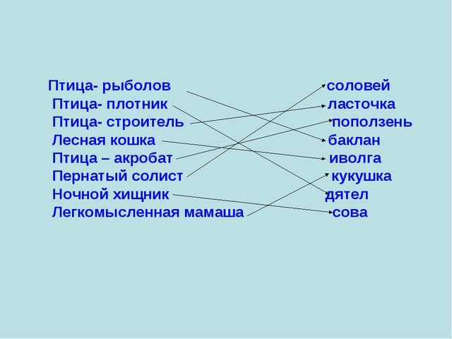 Птица- рыболов соловей Птица- плотник ласточка Птица- строитель поползень Лес...