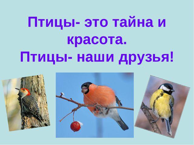 Птицы- это тайна и красота. Птицы- наши друзья!