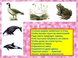 Столько редких животных и птиц, Чтобы выжил простор многоликий Ради света гря