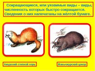 Сокращающиеся, или уязвимые виды – виды, численность которых быстро сокращае