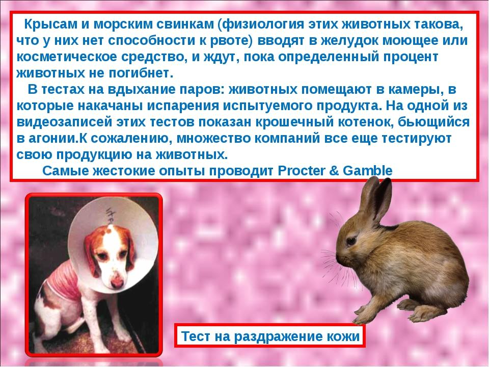 Крысам и морским свинкам (физиология этих животных такова, что у них нет спо...
