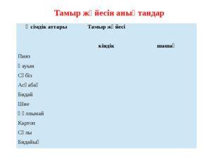 Тамыр жүйесін анықтандар Өсімдік аттары Тамыр жүйесі кіндік шашақ Пияз Қауын
