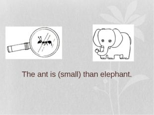 The ant is (small) than elephant.