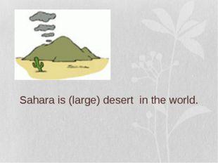 Sahara is (large) desert in the world.