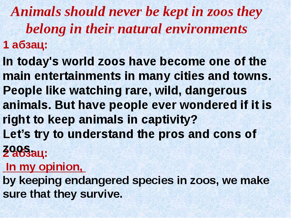 Animals should never be kept in zoos they belong in their natural environment...