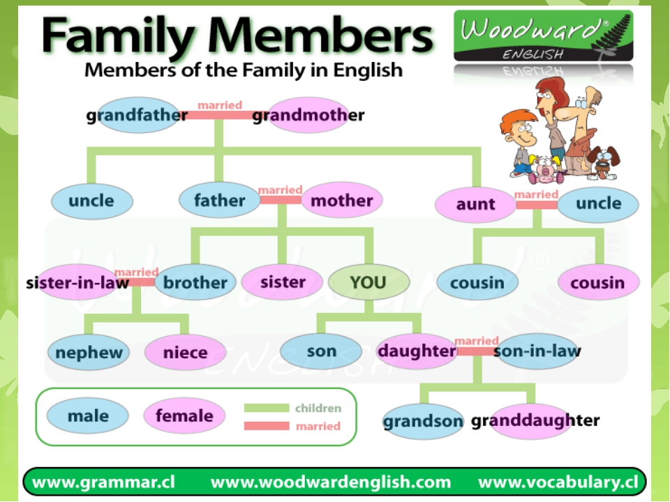 relationship between family members shapes ideas and value Start studying systems theory and family therapy learn what roles are family members expected to -----quality of relationship between child.