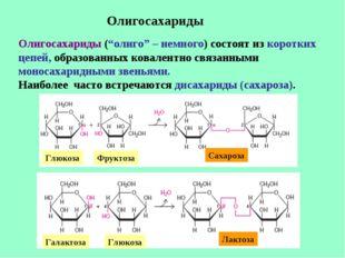 """Олигосахариды Олигосахариды (""""олиго"""" – немного) состоят из коротких цепей, об"""