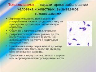 Токсоплазмоз— паразитарное заболевание человека и животных, вызываемое токсо