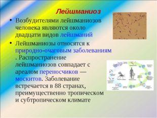 Лейшманиоз Возбудителями лейшманиозов человека являются около двадцати видов