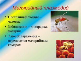 Малярийный плазмодий Постоянный хозяин – человек Заболевание – лихорадка, мал