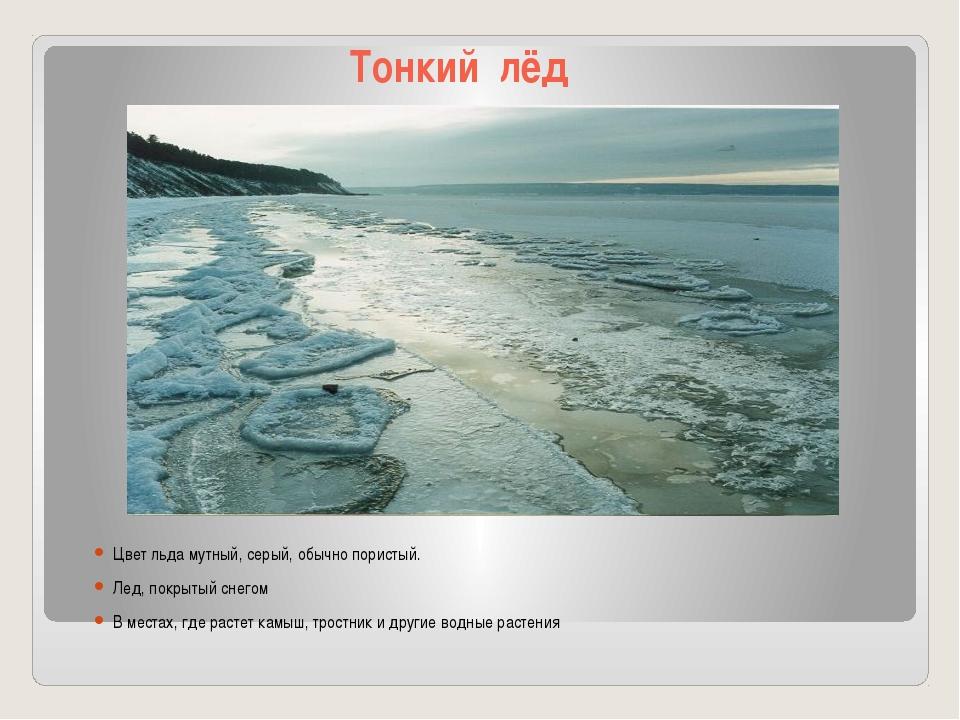 Тонкий лёд Цвет льда мутный, серый, обычно пористый. Лед, покрытый снегом В м...