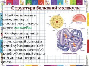 Структура белковой молекулы Наиболее изученным белком, имеющим четвертичную