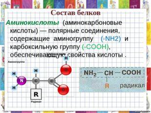 Состав белков Аминокислоты (аминокарбоновые кислоты) — полярные соединения, с