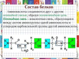 Состав белков Аминокислоты соединяются друг с другом пептидной связью, образ