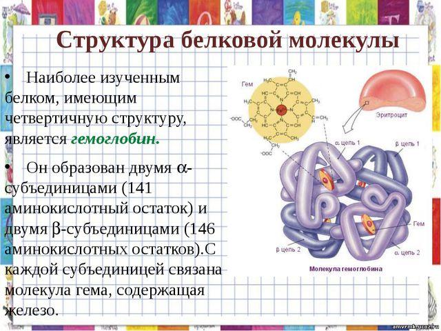 Структура белковой молекулы Наиболее изученным белком, имеющим четвертичную...