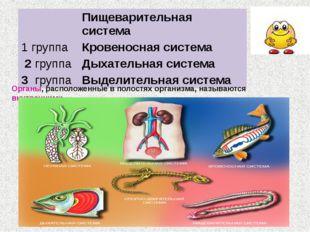 Органы, расположенные в полостях организма, называются внутренними Пищеварите