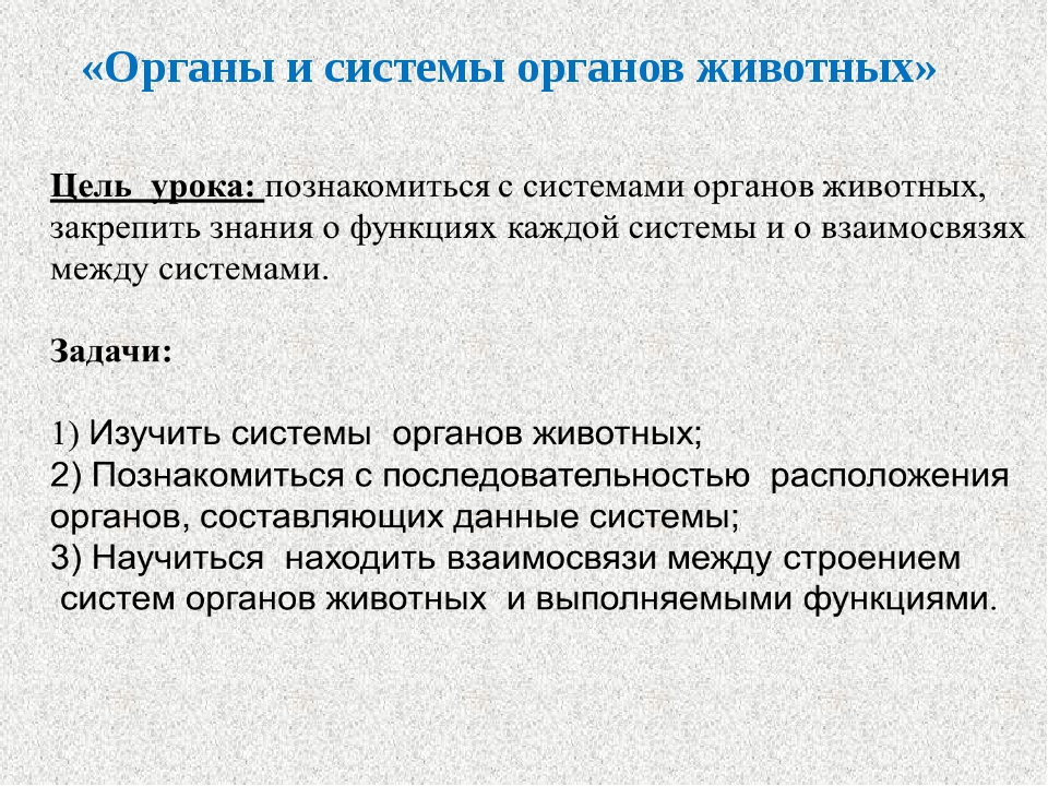 «Органы и системы органов животных»