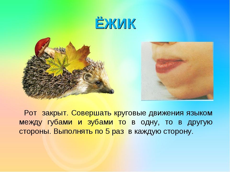 ЁЖИК Рот закрыт. Совершать круговые движения языком между губами и зубами то...
