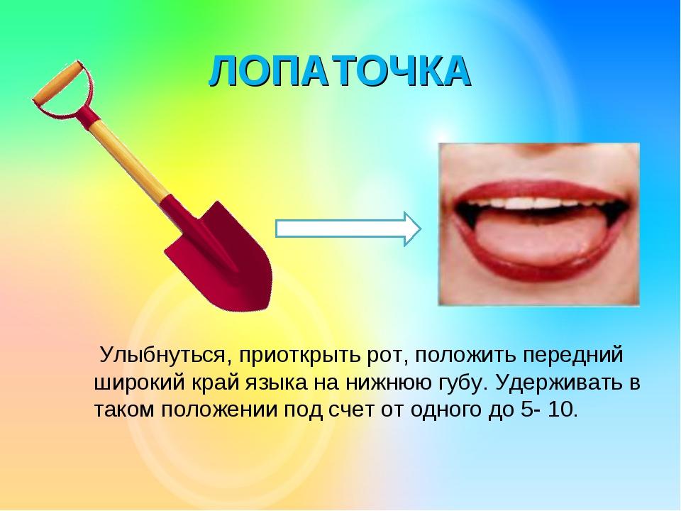 ЛОПАТОЧКА Улыбнуться, приоткрыть рот, положить передний широкий край языка на...