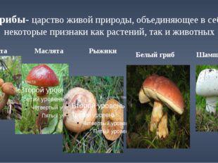 Грибы- царство живой природы, объединяющее в себе некоторые признаки как раст