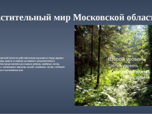 Растительный мир Московской области Природа Московской области действительно