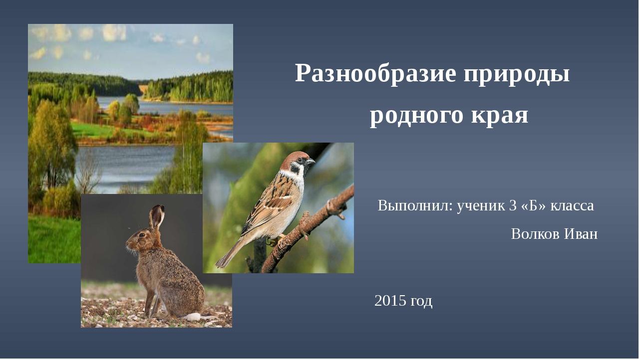 Разнообразие природы родного края Выполнил: ученик 3 «Б» класса Волков Иван...