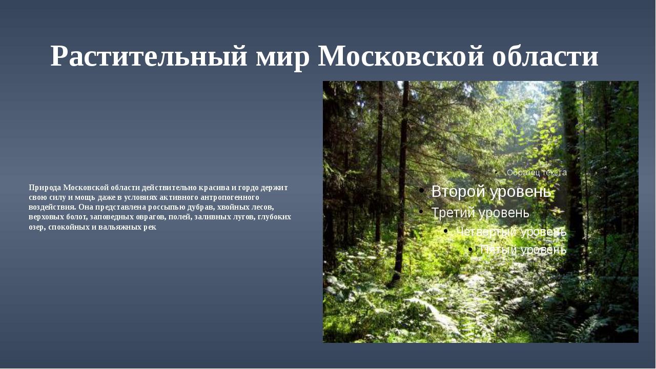 Растительный мир Московской области Природа Московской области действительно...