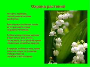 Охрана растений Находясь в природе, нельзя срывать растения для букетов. Буке
