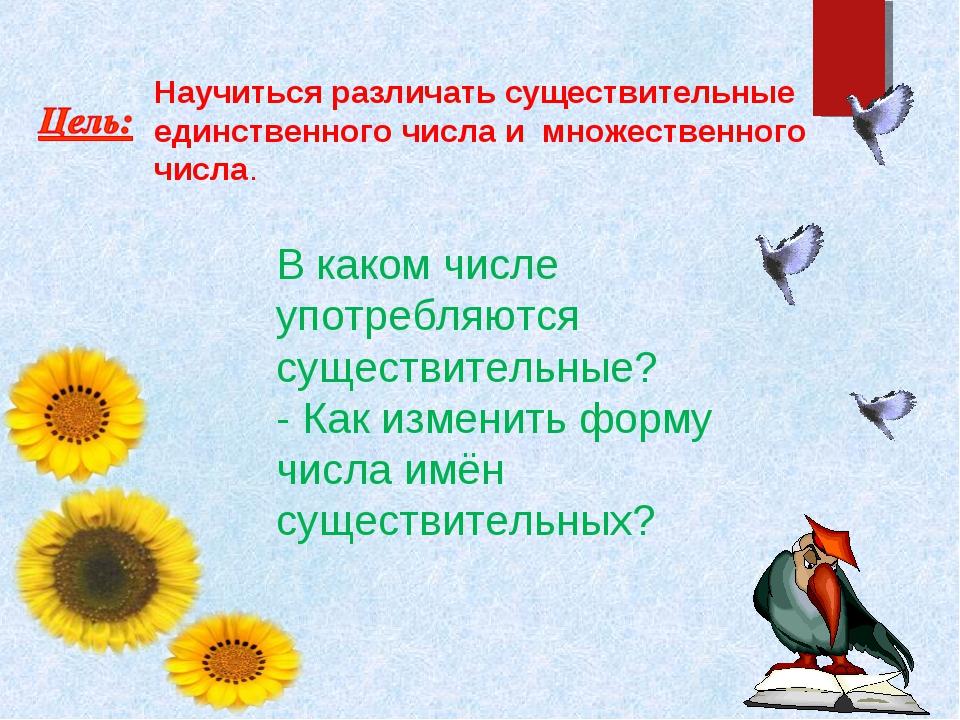 """Капустина презентация.Русский язык """"Образование множественного числа имен существительных"""" 3 класс"""