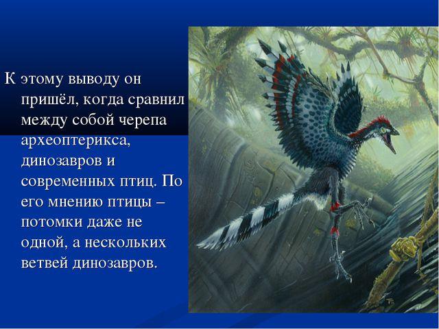 К этому выводу он пришёл, когда сравнил между собой черепа археоптерикса, дин...