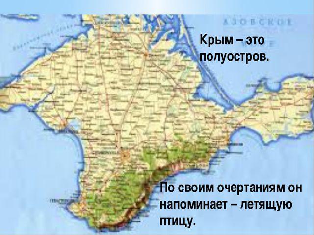 Крым – это полуостров. По своим очертаниям он напоминает – летящую птицу.