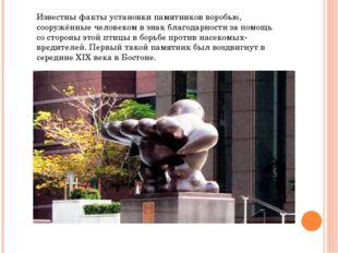Известны факты установки памятников воробью, сооружённые человеком в знак бла