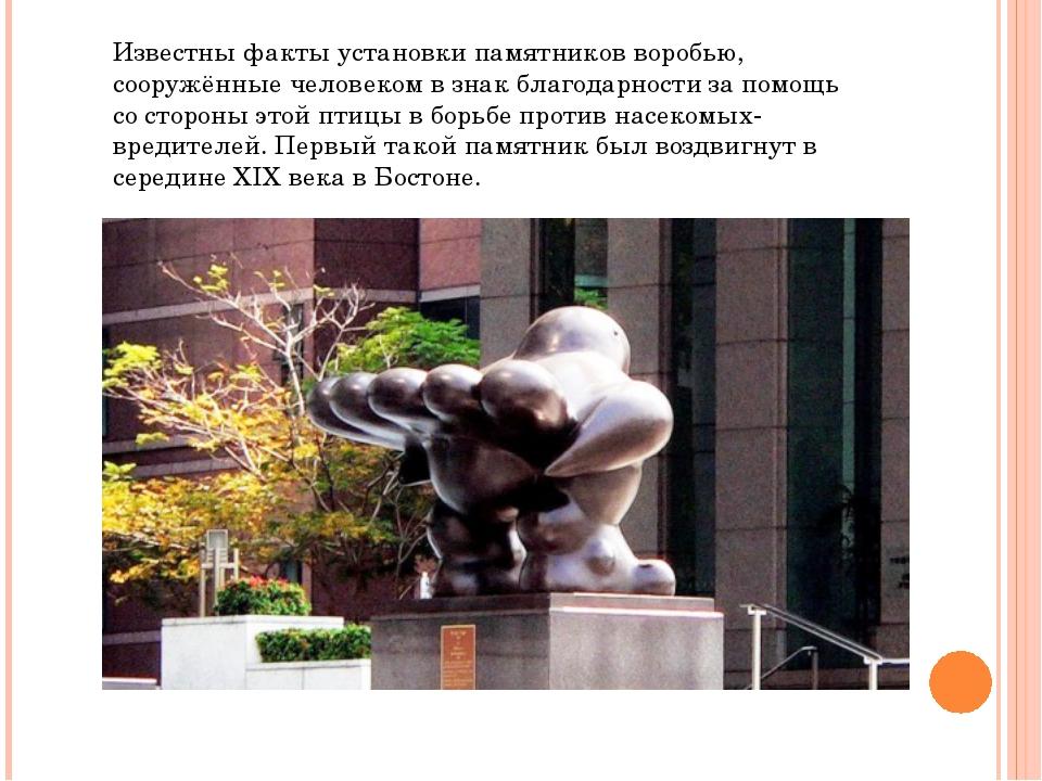 Известны факты установки памятников воробью, сооружённые человеком в знак бла...