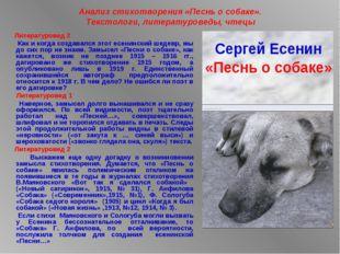 Анализ стихотворения «Песнь о собаке». Текстологи, литературоведы, чтецы Лите