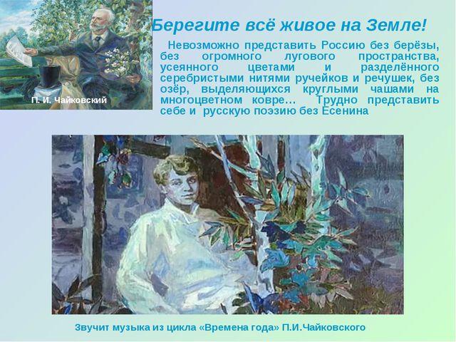 Берегите всё живое на Земле! Невозможно представить Россию без берёзы, без ог...