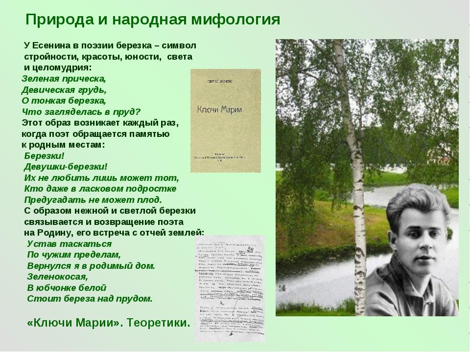 Природа и народная мифология У Есенина в поэзии березка – символ стройности,...