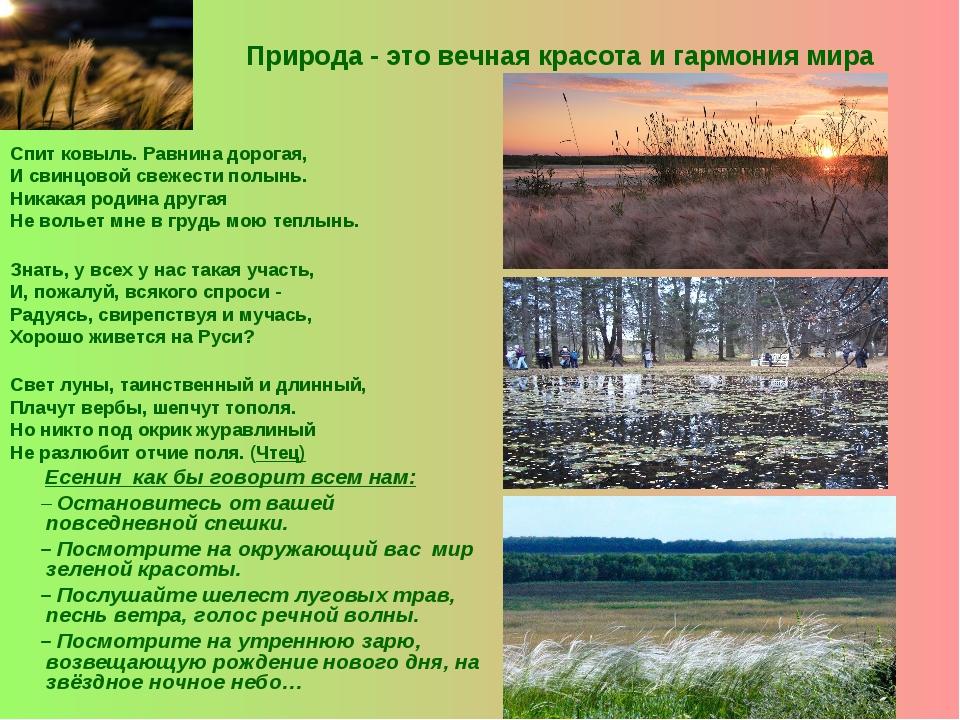 Природа - это вечная красота и гармония мира Спит ковыль. Равнина дорогая, И...