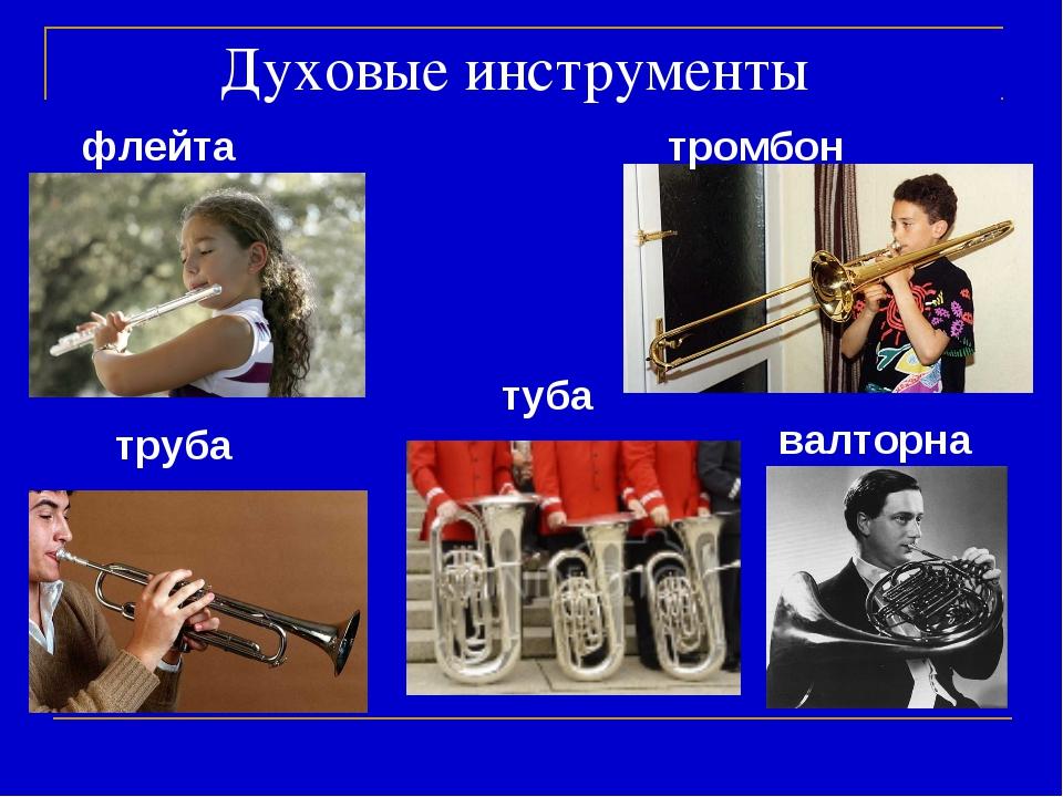 Духовые инструменты флейта труба тромбон валторна туба
