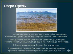 Озеро Удыль Удыль— крупное пресноводное озеро в бассейне рекиАмур. Глубина