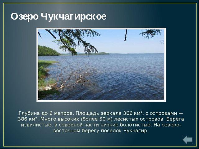 Озеро Орель Оре́ль— крупное пресноводное озеров бассейне рекиАмур, недалек...