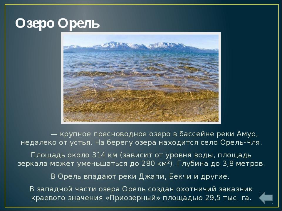 Озеро Удыль Удыль— крупное пресноводное озеро в бассейне рекиАмур. Глубина...