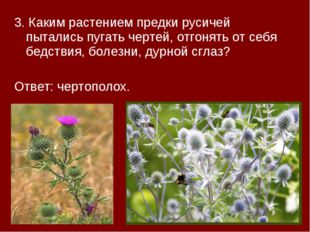 3. Каким растением предки русичей пытались пугать чертей, отгонять от себя бе
