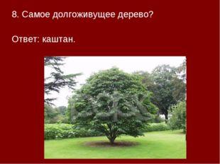 8. Самое долгоживущее дерево? Ответ: каштан.