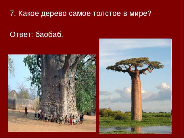 7. Какое дерево самое толстое в мире? Ответ: баобаб.