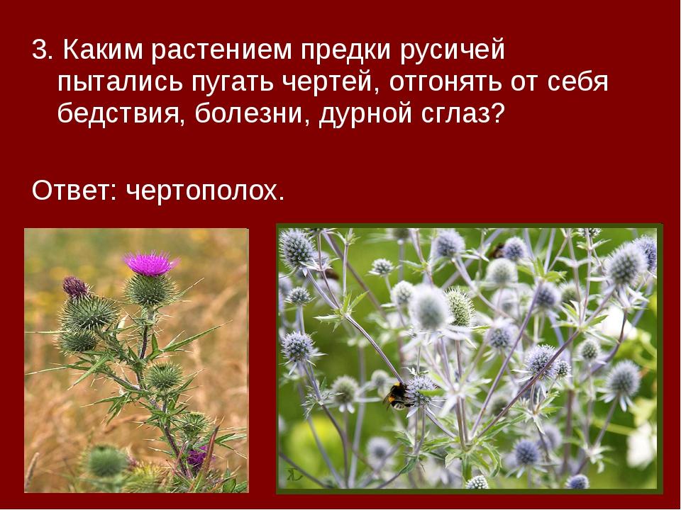 3. Каким растением предки русичей пытались пугать чертей, отгонять от себя бе...