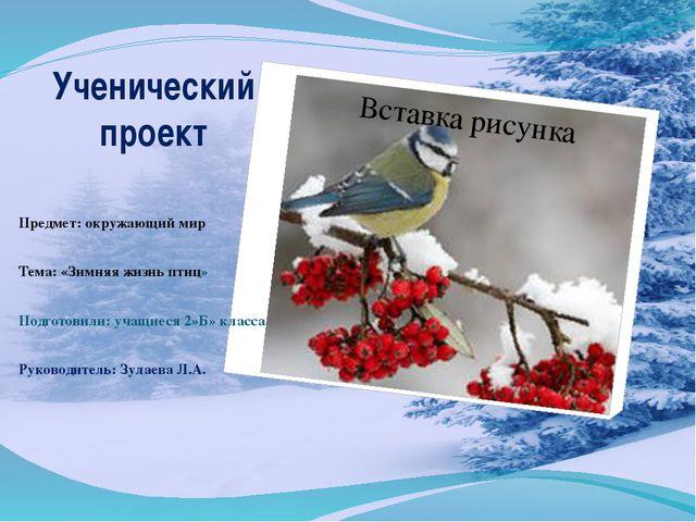 Ученический проект Предмет: окружающий мир Тема: «Зимняя жизнь птиц» Подготов...