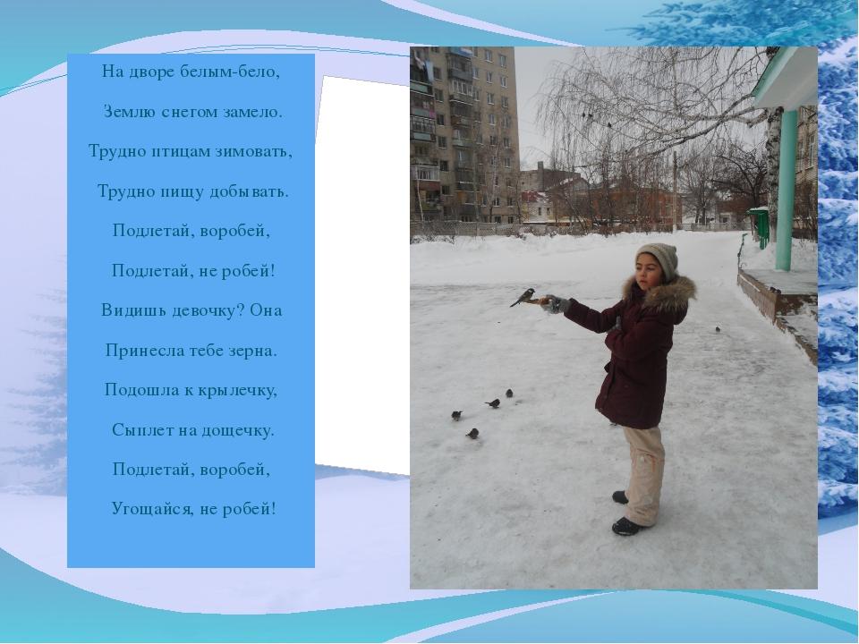 На дворе белым-бело, Землю снегом замело. Трудно птицам зимовать, Трудно пищу...
