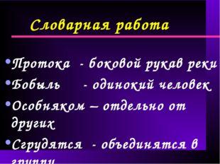 Словарная работа Протока - боковой рукав реки Бобыль - одинокий человек Особн