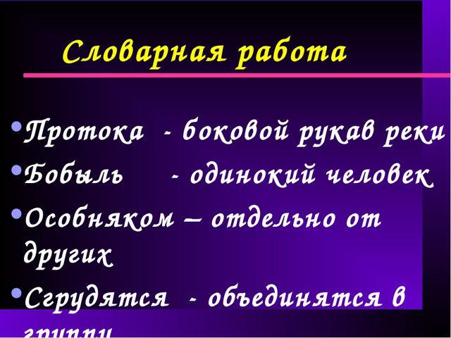 Словарная работа Протока - боковой рукав реки Бобыль - одинокий человек Особн...