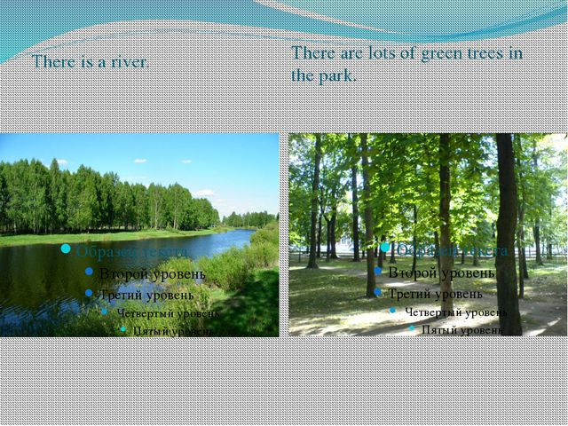 There is a river. There are lots of green trees in the park.